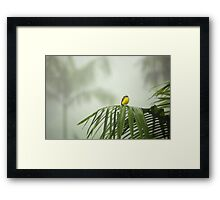 Break from the Crowds (Costa Rica) Framed Print