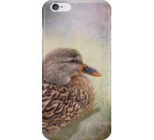 Mallard Duck iPhone/iPod Case iPhone Case/Skin