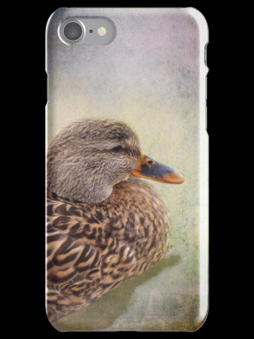 Mallard Duck iPhone/iPod Case by Carol Bleasdale