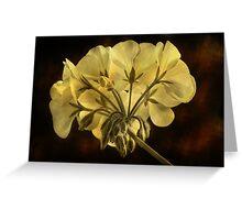 Geranium Flower Texture Greeting Card