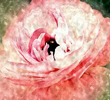 Pink Ranunculus Water Color by Sharon Woerner