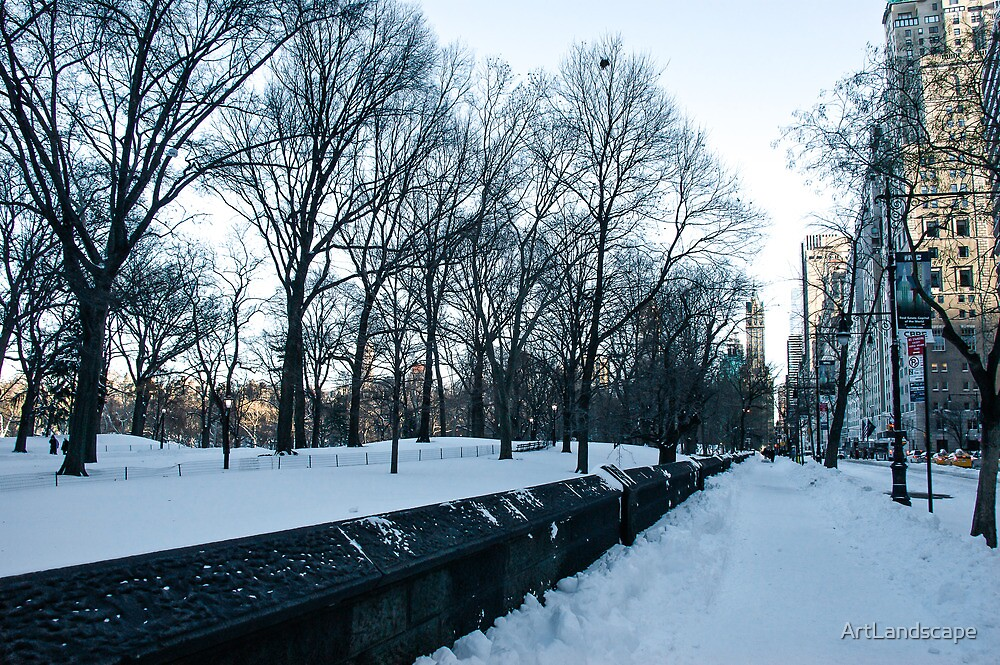 New York Winter by ArtLandscape