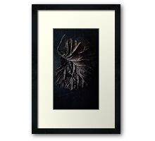 A Leaf Framed Print