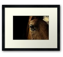 gentle soul Framed Print