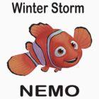 Storm Nemo by riskeybr