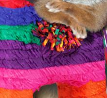 Mexican Bunny Rabbit Sticker