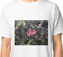 Frozen / a roze in winter Classic T-Shirt