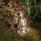 Tiny Stream Waterfall by photoartful