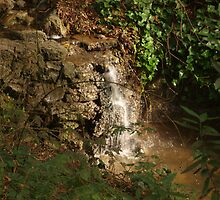 Tiny Stream Waterfall by photoartful