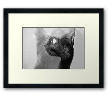 Echos Framed Print
