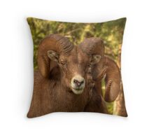 Ram Glare Throw Pillow