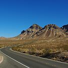 Highway through Nevada desert north of Lake Mead by Claudio Del Luongo