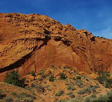 Beautiful red rock wall on Burr Trail Road, Utah by Claudio Del Luongo
