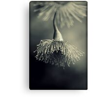 ~ submissive ~ Canvas Print