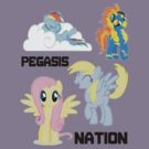 Pegasis Nation by Grainwavez