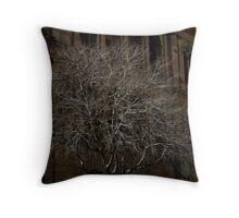 Dead tree shining Throw Pillow