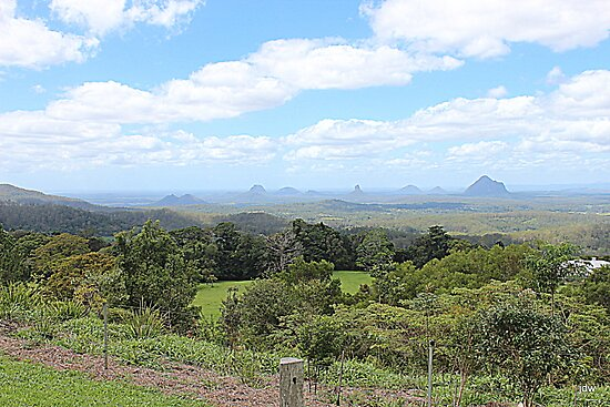 glass house mountains - QLD - Australia  by Jeannine de Wet