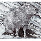 Capybara seated - Hydrochoerus hydrochaeris by Cantus