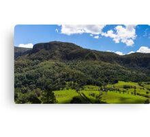 Lamington National Park Canvas Print