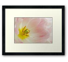 Fountain Of Spring Framed Print