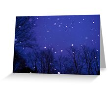 Spin Me In Circles As The Snow Falls Greeting Card