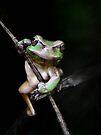 R U looking at me?!! by jimmy hoffman