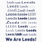 We Are Leeds - BLUE by ademcfade