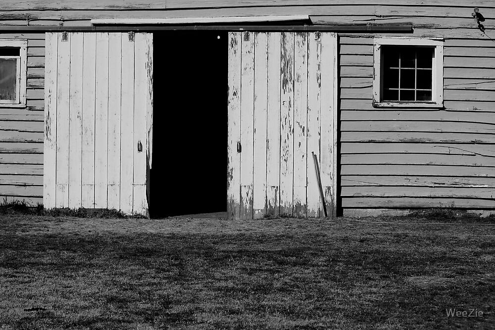 Old Barn by WeeZie