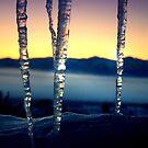 Prisoner Of Winter by Arla M. Ruggles