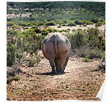 Rhino Rear. Poster