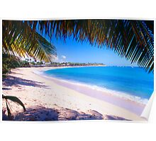 Beach View Under a Palm Tree Poster