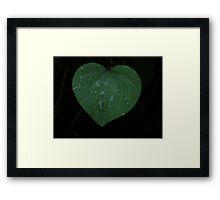 Leaf of love Framed Print