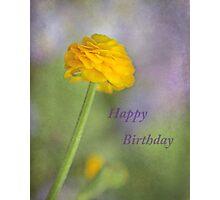 Happy Birthday Viv ~ Photographic Print