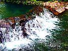 waterfall at busch gardens 3 by LoreLeft27