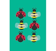 Ladybugs and bees Photographic Print