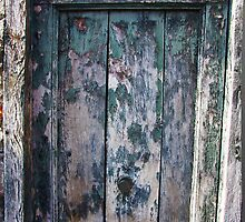 Green Door by timgraphics