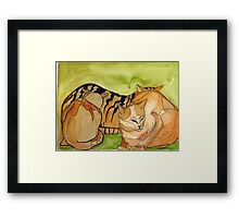 Contented Kitty's Framed Print