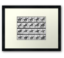 Man and horse jumping a fence, plate 640 from 'Animal Locomotion', 1887  Framed Print