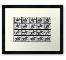 Galloping Horse, plate 628 from 'Animal Locomotion', 1887 Framed Print