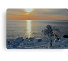 Frozen in Time, Acadia's Otter Cliffs Canvas Print