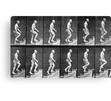 Man ascending stairs, from 'Animal Locomotion', 1887 Canvas Print