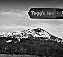 Tegg's Nose by thepicturedrome