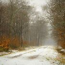 Mist and snow by JEZ22