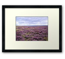 Purple Horizon Framed Print