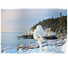 Ice-Laden Coastline,  Acadia, Maine Poster