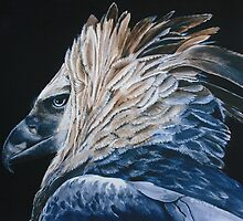 Harpy Eagle *Traditional Art in Watercolor and Guache* by deborah zaragoza
