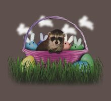 Easter Raccoon Kids Clothes