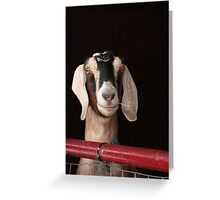 Hey Goat ! Greeting Card