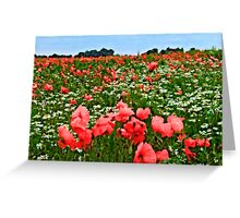 Poppyland, Colby, Norfolk Greeting Card