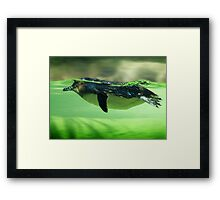 Cool Cruisin' Framed Print